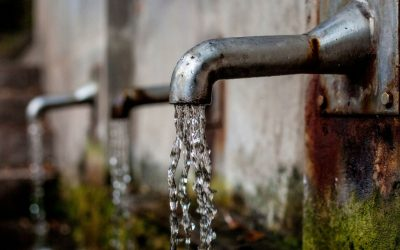 Las necesidades de agua